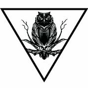 bw-clear-owl