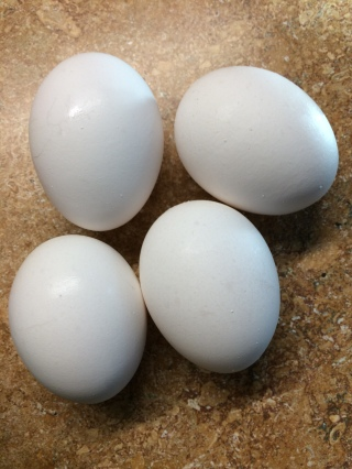 The number of eggs can be adjusted to suit